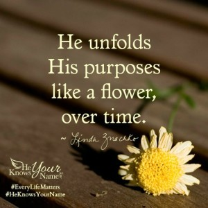 """He unfolds His purposes like a flower, over time."" ~Linda Znachko, He Knows Your Name"